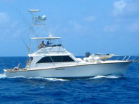 Cozumel Private Charters