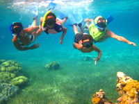Cozumel Private Snorkeling Tour